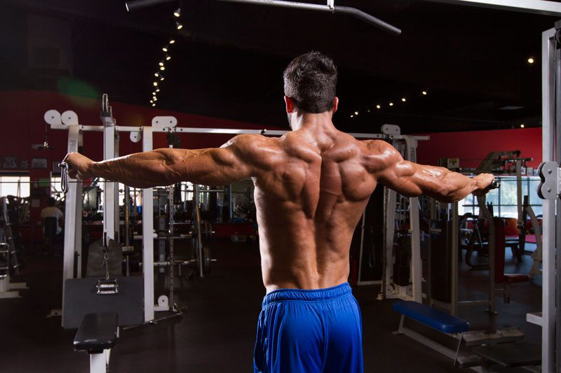 Sergi Constance's Back Workout
