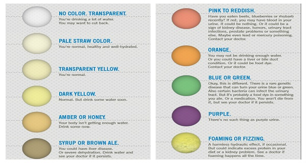 What-Does-The-Color-Of-Your-Urine-Says-About-Your-Health